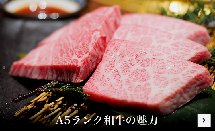 The Charm of A5 Wagyu
